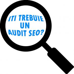 descrierea unui audit seo